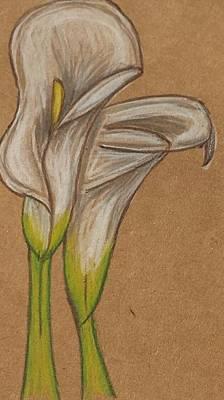Lilies Drawings - Lilies by Kaara Brockwell