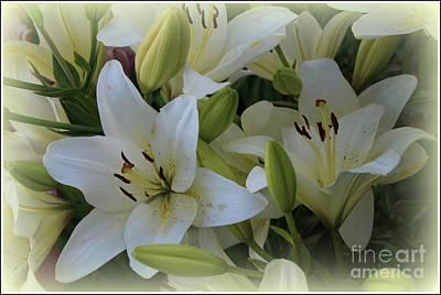 Photograph - Lilies Lovely In White by Dora Sofia Caputo Photographic Design and Fine Art