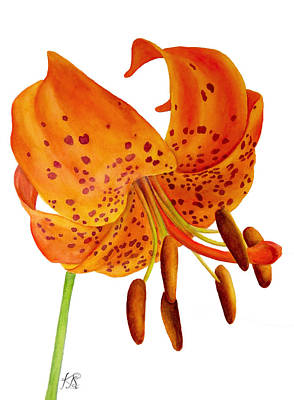 Wall Art - Painting - Orange Lily by Kristina Spitzner