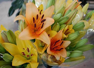 Painting - Lillies - Peach And Yellow Colors by Michael Thomas