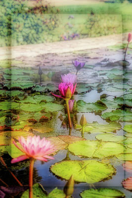 Photograph - Lillie's Of Capistrano by Michael Hope