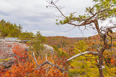 Photograph - Lilly Bluff Overlook At Obed by Melinda Fawver