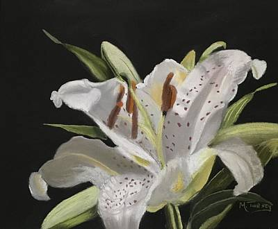 Pastel - Lilly by Michele Turney