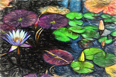 Digital Art - Lily Pad Pond by Terry Cork