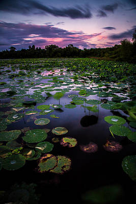 Photograph - Lilly Pads At White Lake Long Exposure by Micah Goff