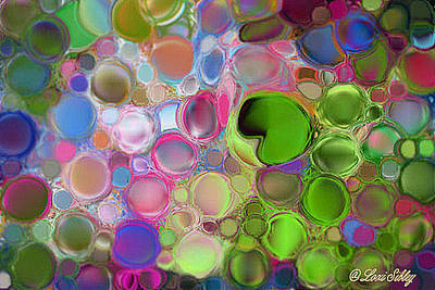Digital Art - Lilly Pond by Loxi Sibley