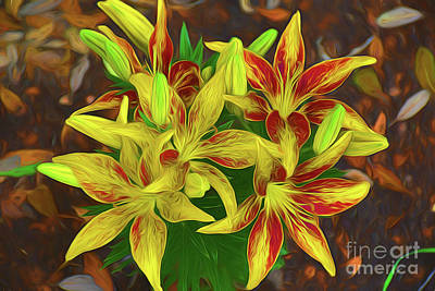 Photograph - Lily 32818d by Ray Shrewsberry