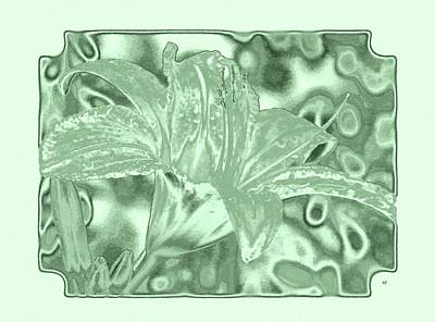 Lilies Digital Art - Lily Elegance 2 by Will Borden