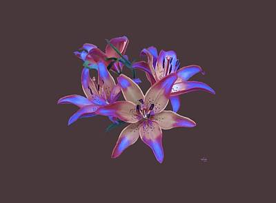 Lily Flowers Blue Maroon Art Print by Susanna  Katherine