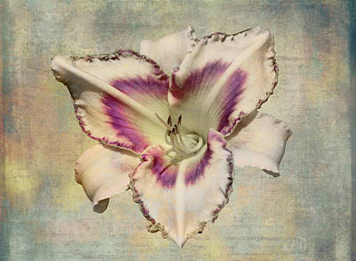 Lily For A Day Art Print by Angela A Stanton