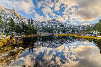 Lilies Royalty-Free and Rights-Managed Images - Lily Lake by Mike Ronnebeck
