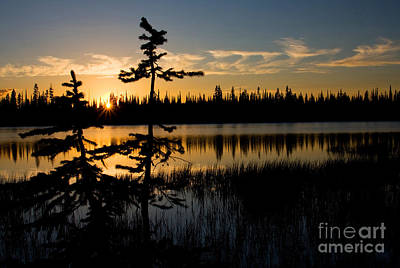 Photograph - Lily Lake Sunset 3 by Katie LaSalle-Lowery