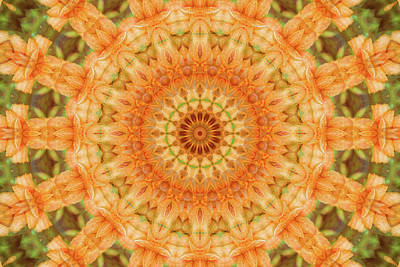 Digital Art - Lily Mandala by Janusian Gallery