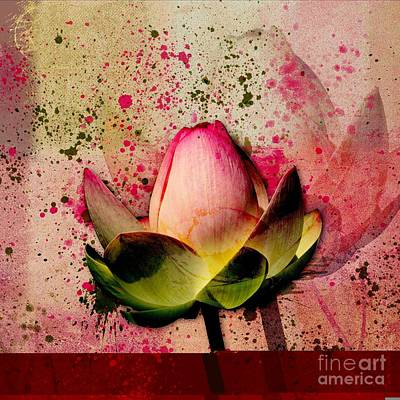 Waterlilies Digital Art - Lily My Lovely - S23asq by Variance Collections