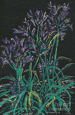 Lilies Mixed Media - Lily of the Nile  by Vicki  Housel