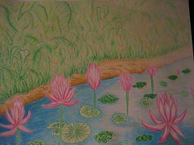 Lilly Pond Mixed Media - Lily Of The Stream by Virginia Patrick