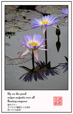 Photograph - Lily On The Pond by David Dunham