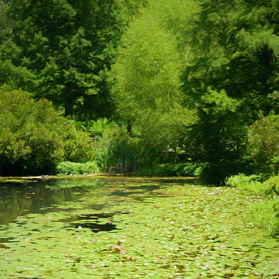Photograph - Lily Pad Pond In Summer by Ann Powell