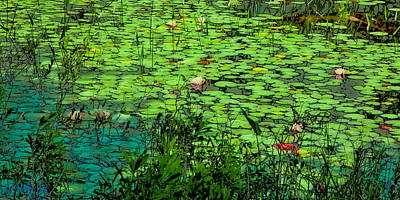 Photograph - Lily Pads - An Abstract by David Patterson
