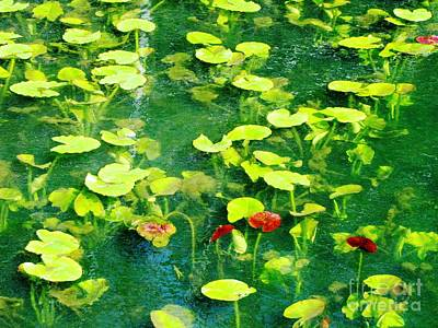 Photograph - Lily Pads by Melissa Stoudt