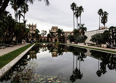Photograph - Lily Pond At Balboa Park by Randy J Heath