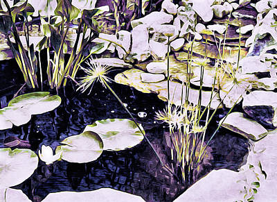 Lilies Mixed Media - Lily Pond by Susan Maxwell Schmidt