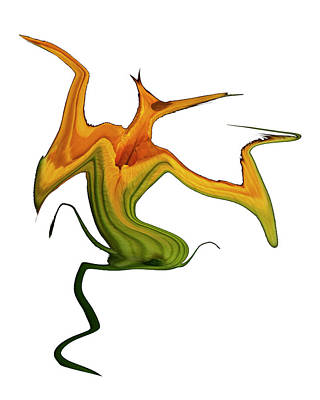 Digital Art - Lily Spirit by Robert Woodward