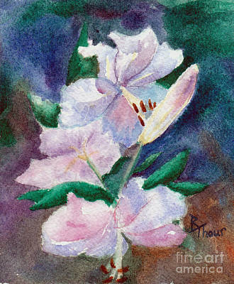 Painting - Lily Study by Brenda Thour