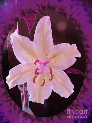 Digital Art - Lily With Purple Accents by Donna L Munro