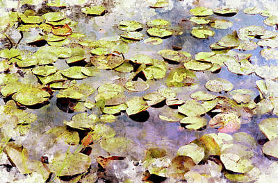 Digital Art - Lilypads W C by Peter J Sucy