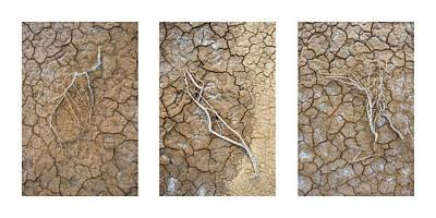 Limbs Triptych Art Print