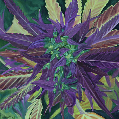 Pot Painting - Lime And Purple Bud by Anita Toke