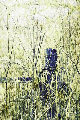 Photograph - Limits by Jean OKeeffe Macro Abundance Art