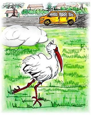 Limping Ibis Art Print