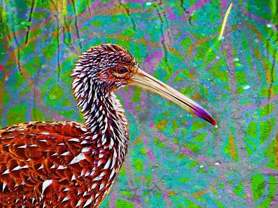 Digital Art - Limpkin II by David MCKINNEY