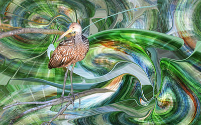 Photograph - Limpkin Studying Time Flow by rd Erickson