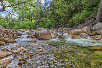 Photograph - Lincoln Woods Trail 9 by Brian MacLean