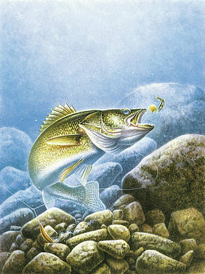 Lake Painting - Lindy Walleye by JQ Licensing