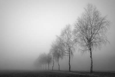 Foggy Road Photograph - Line Dance by Renate Kienbacher