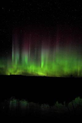 Photograph - Line Of Aurora Pillars by Dale Kauzlaric