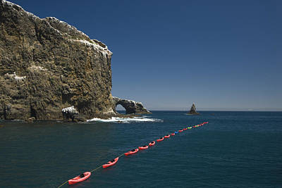 Anacapa Photograph - Line Of Kayaks Floating From Boat by James Forte