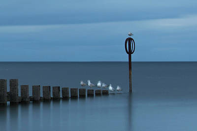 Photograph - Line Up by Veli Bariskan