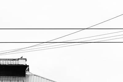 Photograph - Lines #9208 by Andrey Godyaykin