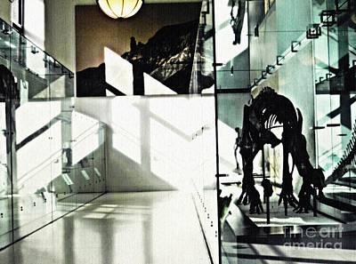 Photograph - Lines, Angles And Dinosaur Bones by Sarah Loft