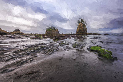 Olympic National Park Digital Art - Lines At The Shore II by Jon Glaser
