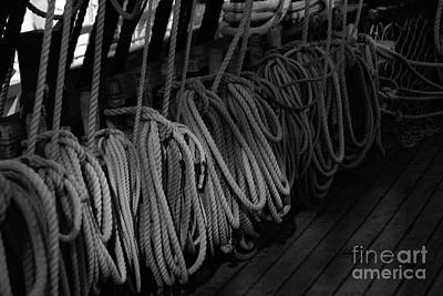 Photograph - Lines Bw by Linda Shafer