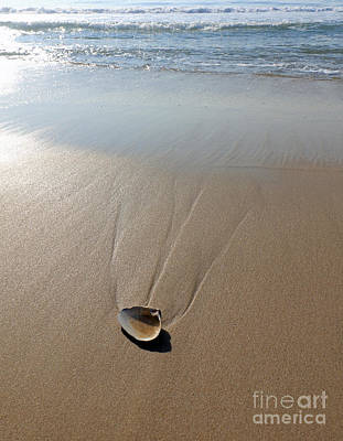 Photograph - Lines In The Sand by Mary Haber