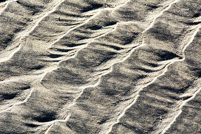 Photograph - Lines On The Beach by David Shuler