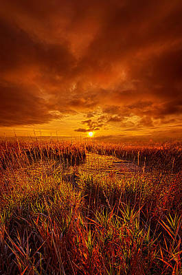 Photograph - Lingering by Phil Koch