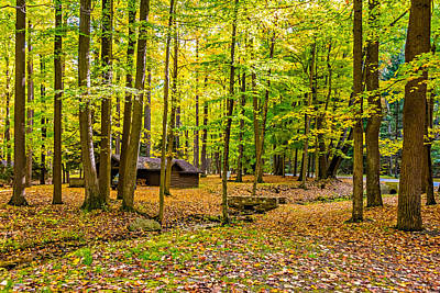 Highland Park Photograph - Linn Run Pennsylvania by Steve Harrington